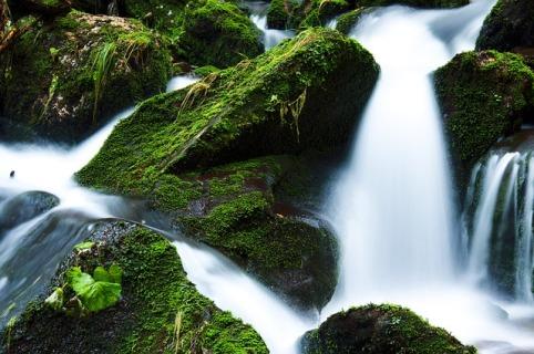 creek-21749_640.jpg