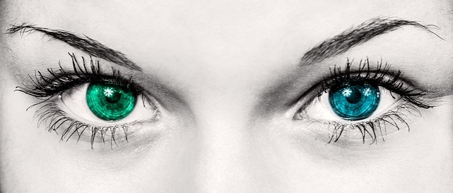 eyes-586849_640.jpg