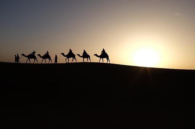 camels-1149803_640.jpg